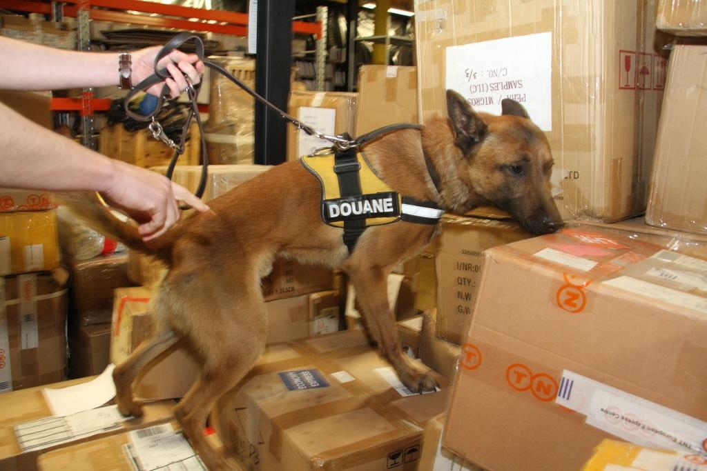 Douane - Honden